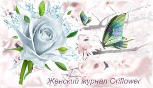 Oriflowers